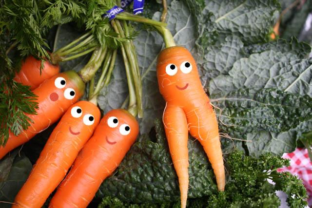 vegetablehusband.com